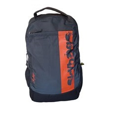 Skybags Boost 02 Grey Laptop Bac